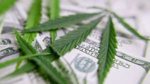 Michigan Pot Shops Sold $10 Million Worth of Marijuana in First 6 Weeks of Legal Weed.