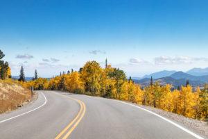 Cannabis Companies Sponsor 2/3 of Adoptable Colorado Highways.
