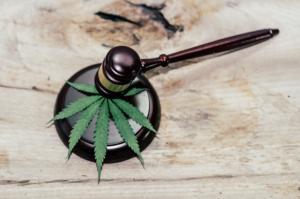 Texas Marijuana Laws in 2020: Lots of De Facto, Not Much De Jure.
