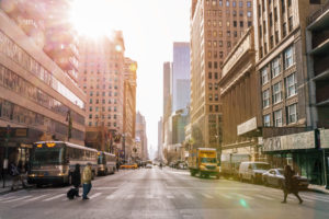 Cannabis Legalization in New York Likely Delayed Due to Coronavirus.