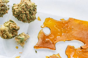 Proper Strains and Flexible Production Methods are Key to Maximizing Cannabis Extraction Yields.