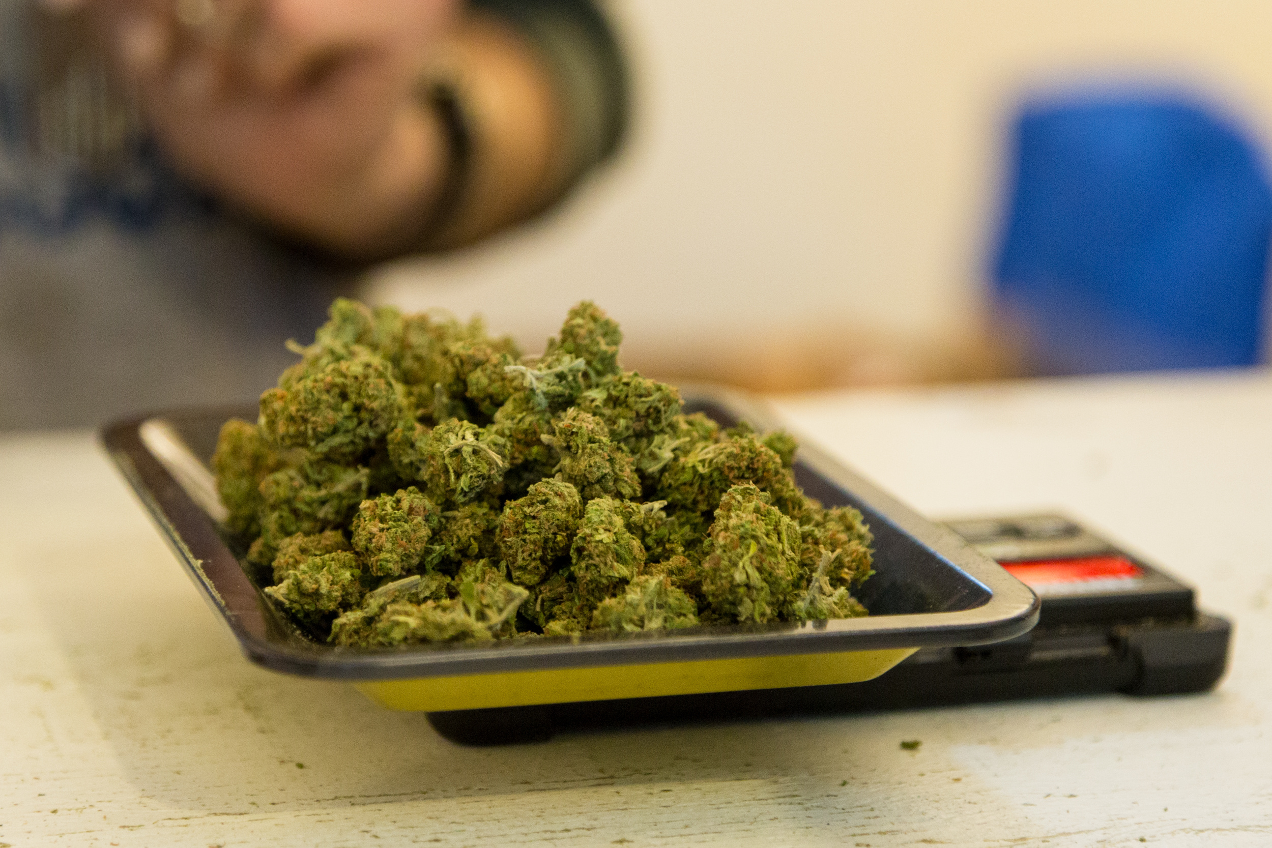 Cannabis Employees are in High Demand During Economic Crash.