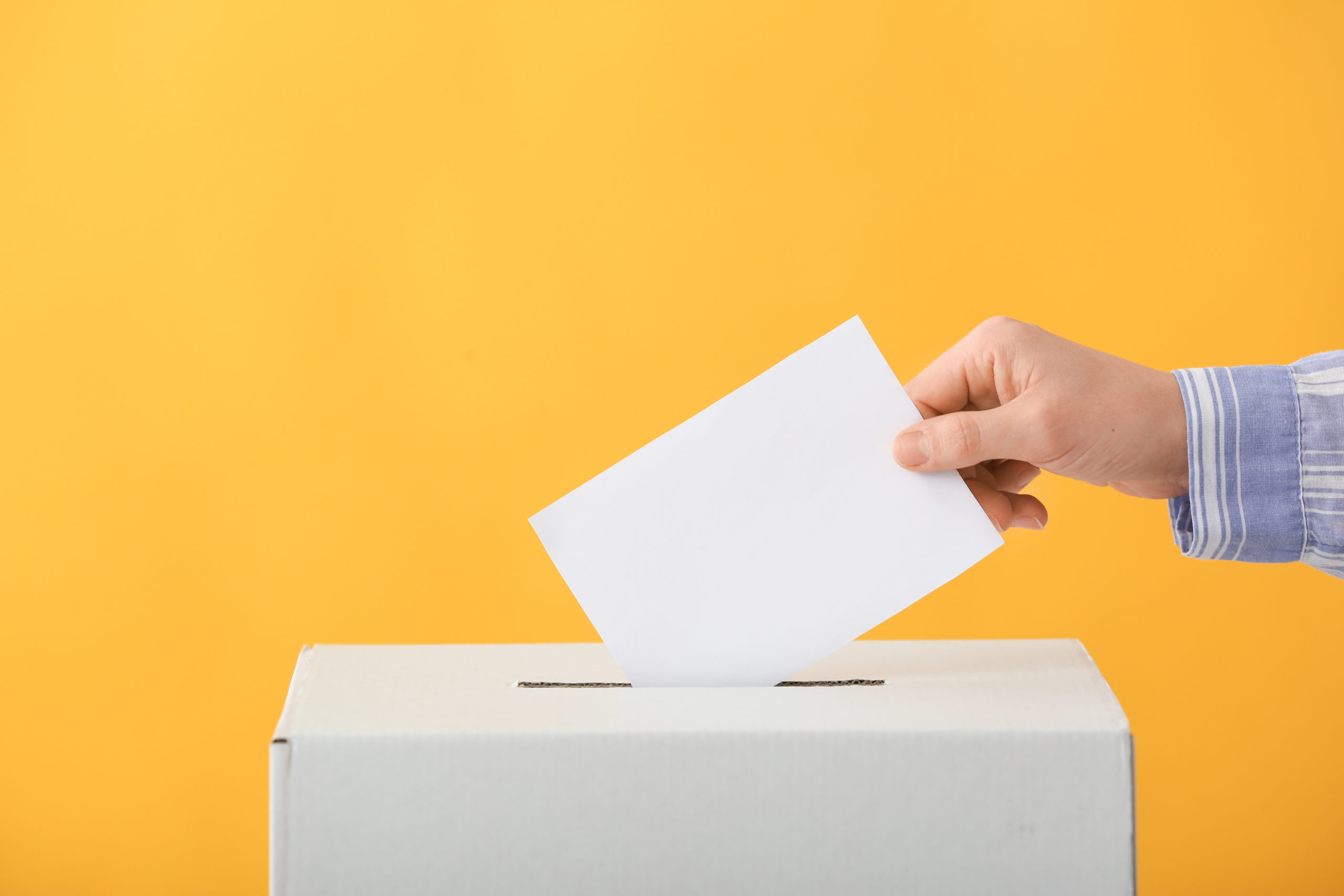 Election 2020: All You Need to Know About Cannabis Legalization on the Ballot.