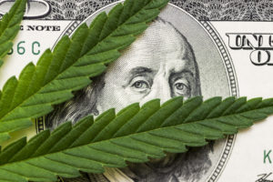 Cannabis Charges On Your Record? These Michigan Pot Shops Will Give You A Discount.