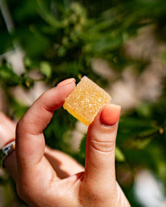 You Know What Else Has Sold Well During the Pandemic? Weed Edibles.