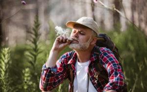 Cannabis-Friendly Campground in Michigan Shut Down as 'Safety Threat'.