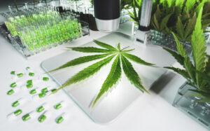 California marijuana testing lab regains revoked license via court settlement