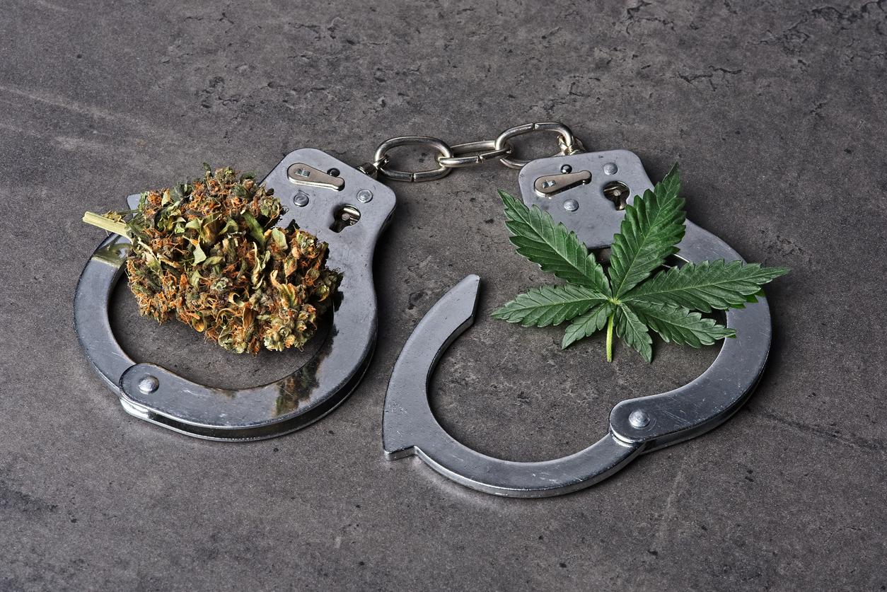 Biden DEA Pick Spoke Against Marijuana Decriminalization, But Booker Says She'll End 'Drug War Policies'