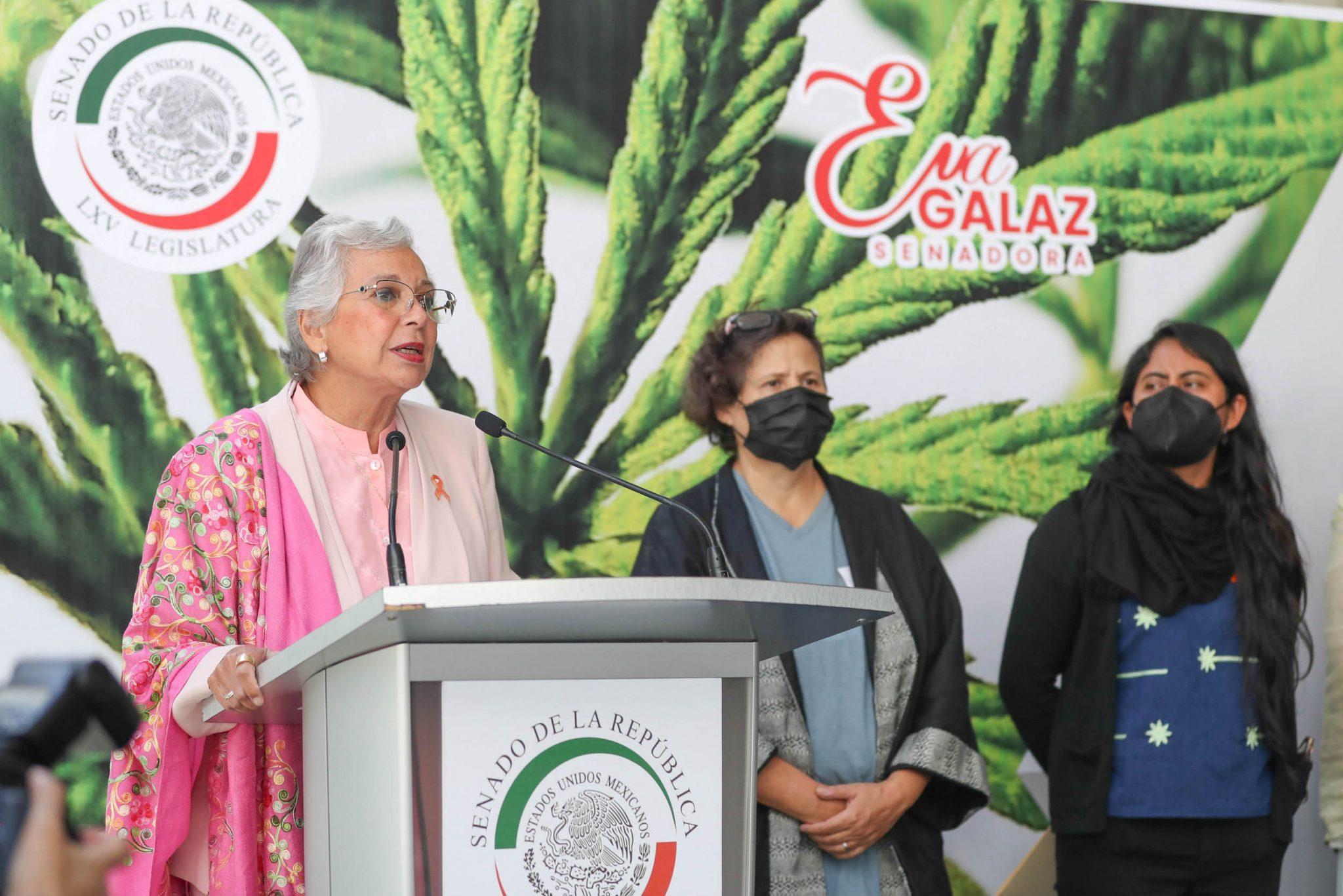 Top Mexican Senator Says Marijuana Legalization Bill May Be Taken Up Within Weeks
